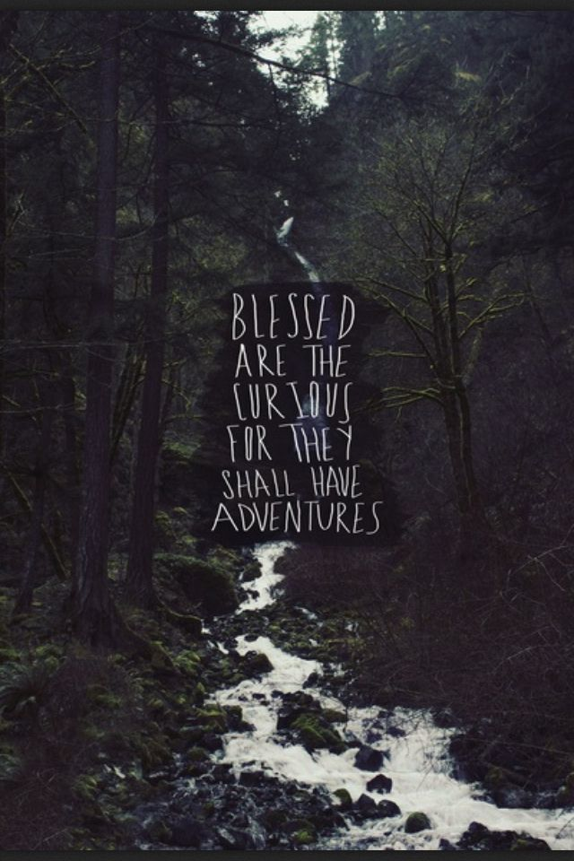 Blessed are the curious for they shall have adventures.:
