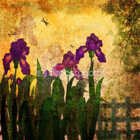 Картина Ирис цветы старинные гранж-фон — Stock Image #105290188