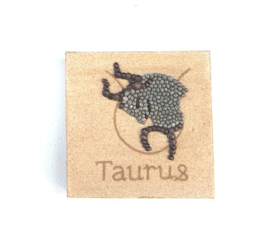 Taurus Star Sign, Seashell Mosaic on Sand, Artwork with Seashells & Sand, Mosaic Art, 3D Art Collage, Home Decor, Wall Art Decor, Gift Idea #ArtworkwithSeashells #mosaiccollage #seashellmosaic #homedecor #walldecor #3D