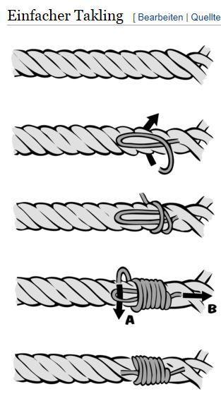 DIY Anleitung für einen Kragen und ein Seil. Der absolute Trend unter …   – Hunde