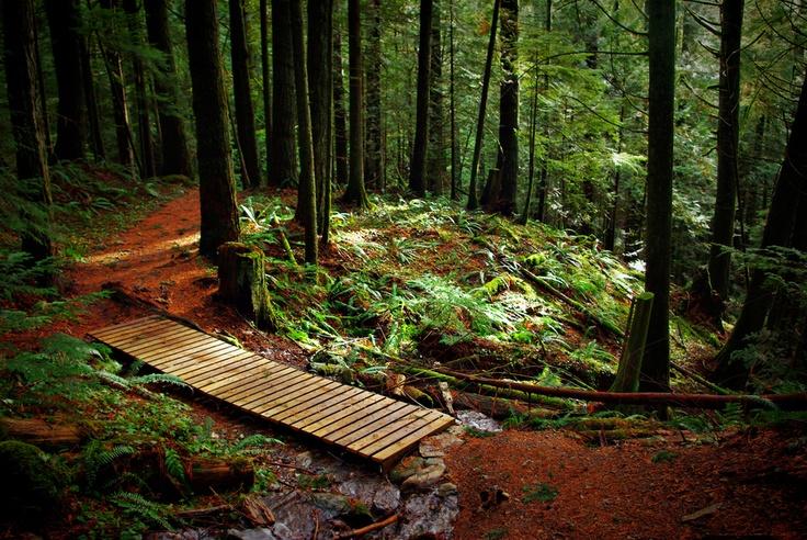 Elk Mountain Trail, Chilliwack, BC, Canada