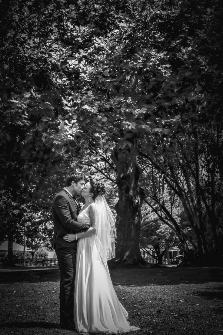 Johanna Watts Wedding Photography  Bride and Groom at the Gardens the Trees always make a beautiful backdrop