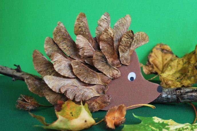 Igel basteln Blätter Naturmaterialen Kinder