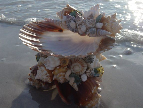Its a soap dish, business card holder, candy dish, jewelry holder, coctail pick holder, place to toss your change!    This unique shelled dish is entirely hand built with a base of Pass-A-Grille beach collected Florida fighting conchs and a variety of other Florida and West Indian