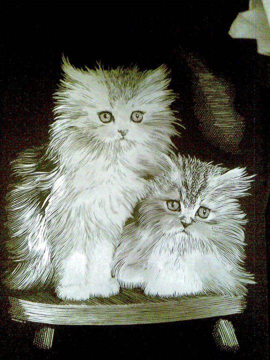 Kočičky (škrábáno na stříbrném podkladě)