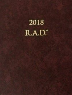 Andy Winson: Diár úspechu 2018 - R.A.D, 9,92€ v Panta Rhei