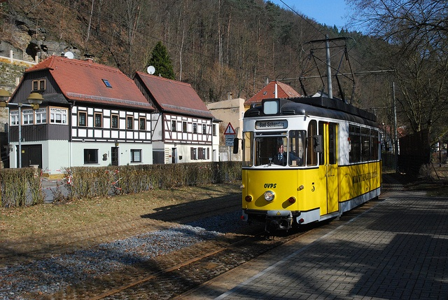 Kirnitzschtalbahn - TW 3: Photo