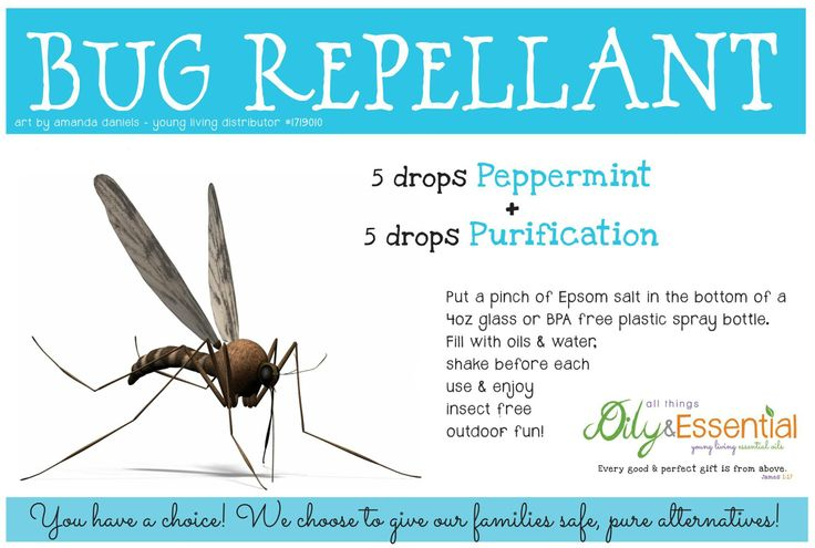 Bug Repellant - Young Living Essential Oils