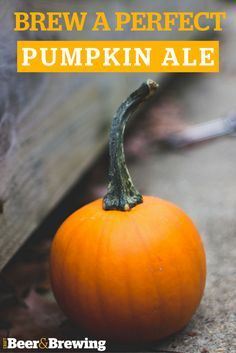 Pumpkin beer predates the founding of the United States, making it our first truly national beer. With pumpkins popping up at farmer's markets, here are some techniques for brewing a fall favorite brimming with malty comfort, rich pumpkin flavor, and an assertive spice profile.