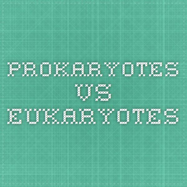 biology lesson plan eukaryotes and prokaryotes Biology cell structure and function prokaryotic vs eukaryotic  how do prokaryotes and eukaryotes differ in protein synthesis.