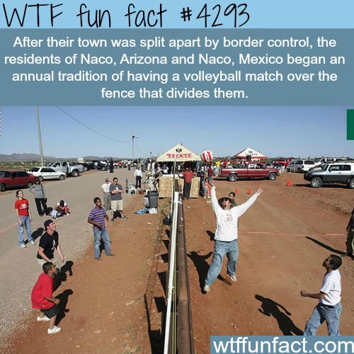 Naco, Arizona Vs Naco, Mexico volleyball match -  WTF fun facts