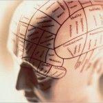 LOS 4 TEMPERAMENTOS DEL SER HUMANO http://elcerebrohabla.com/2010/03/04/los-4-temperamentos-del-ser-humano/