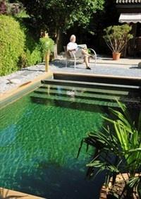Schwimmteich als Oase im Garten