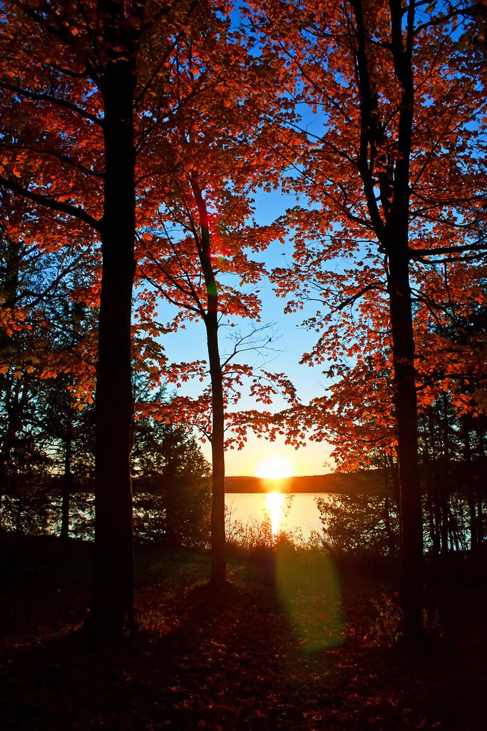 Pin by c2ctravels on Sunsets | Sunset landscape, Autumn ...