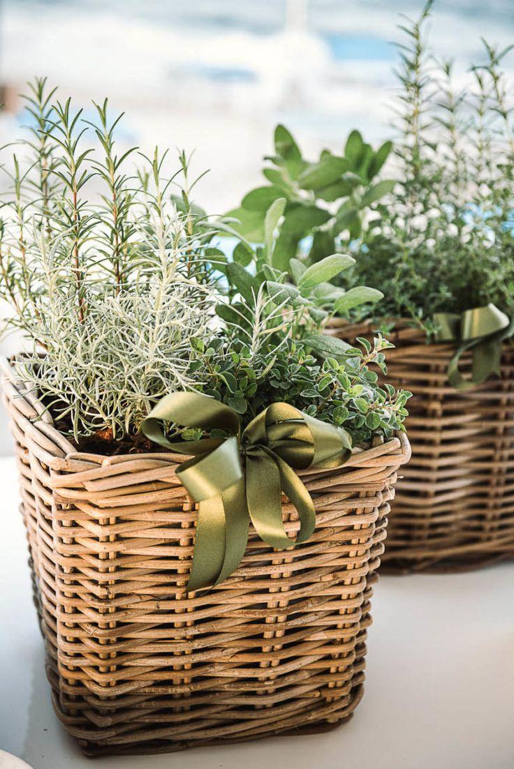 Oltre 20 migliori idee su piante e verde per matrimonio su - Porta piante aromatiche ...