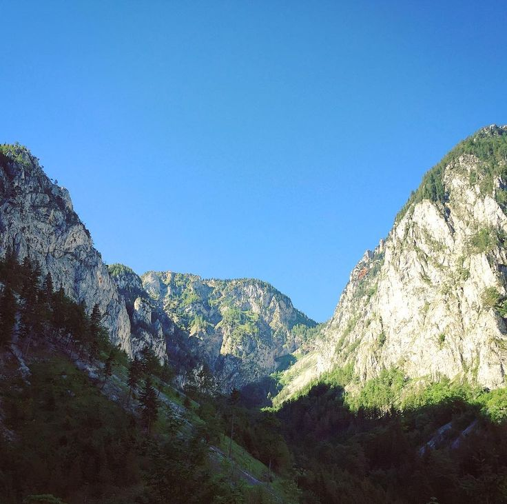 #getlost #hike #holiday #mountinesarecallingsoimustgo #mountains #mountainview #explore #explorer #exploremore #adventure #igers  #alpen #raxalpe #vocation #ferrata #sky #hiking #forest #mountainview #travel #travelling #traveler #nas_svet