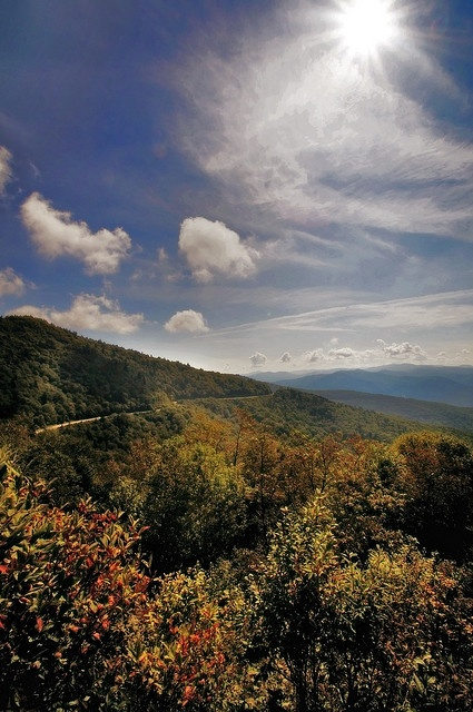 Best 25 smokey mountain ideas on pinterest smoky for Privately owned cabins in the smoky mountains