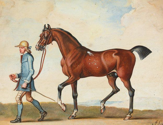 British Museum celebrates the Arabian and Thoroughbred horse, 24th May - 30th September, 2012. James Seymour (1702–1752), A bay horse being led by a training groom. This horse is likely to be the famous racehorse Flying Childers. Watercolour, 18th century.