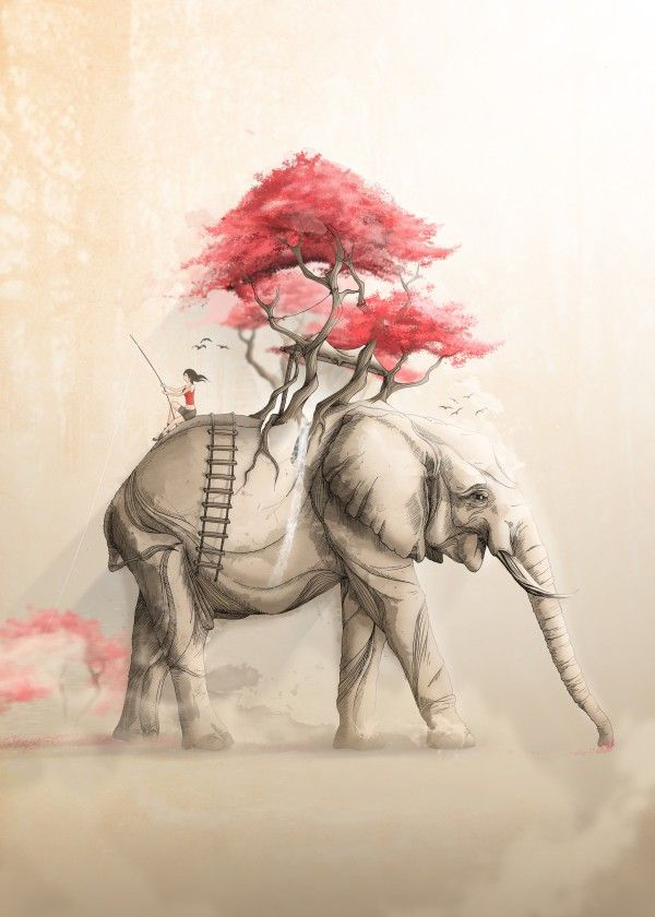 Revenge of the Nature VIII: Fishing Memories in the Elephant