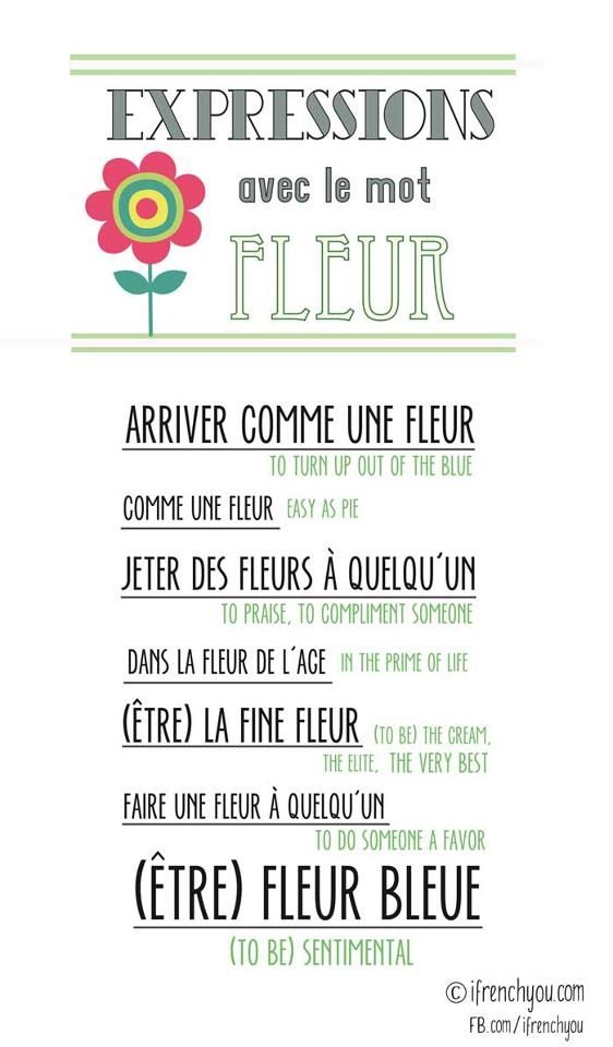 Expressions avec le mot 'fleur' French idioms using flower #French #language