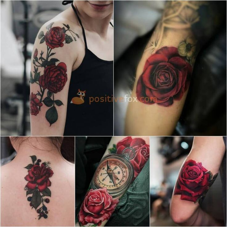 Best 100+ Rose Tattoo Ideas – Rose Tattoos Ideas with Meaning  – Tattoo designs