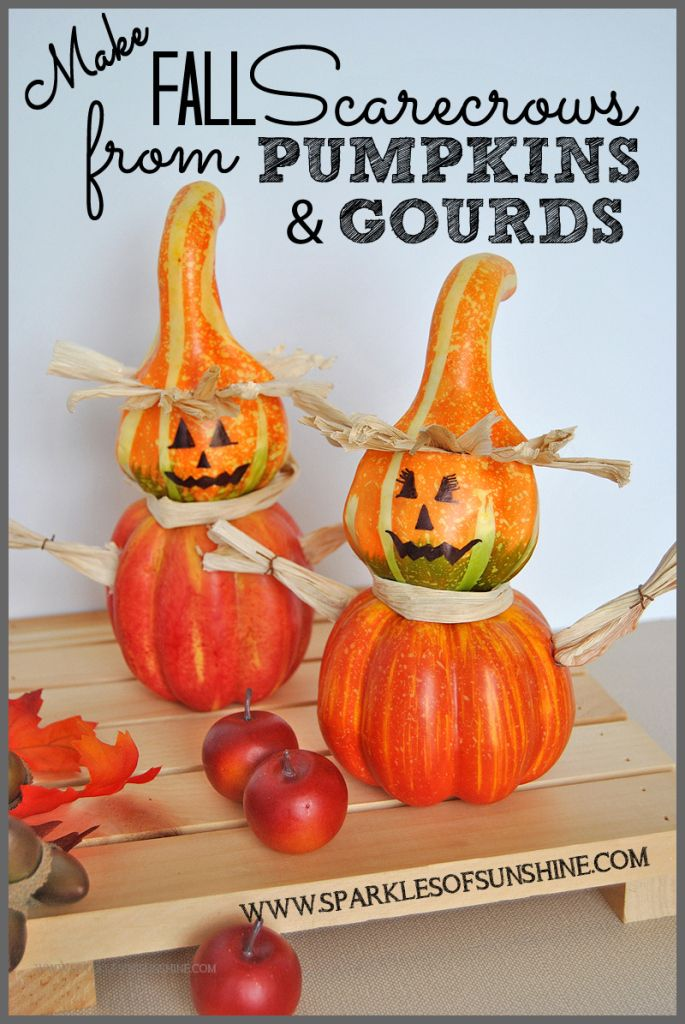 Make Fall Scarecrows From Pumpkins & Gourds :http://www.sparklesofsunshine.com/make-fall-scarecrows-from-pumpkins-gourds/
