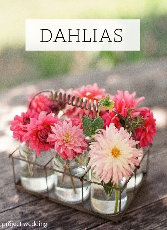80+ beautiful ideas for including Dahlias in your floral arrangements