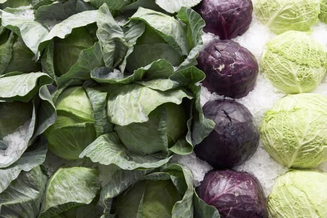How to Eat Local in the Midwest: Guide to Seasonal Produce: Many Types of Cabbages
