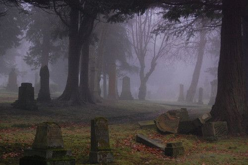 John Taylor While We Are Mourning The Loss Of Our: 1000+ Images About Cemeteries On Pinterest