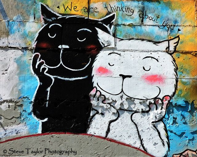 Street art cats   We Are Thinking About You