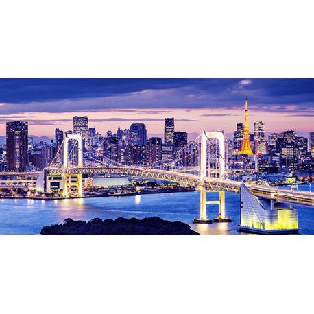 Obraz ze zdjęcia na płótnie - Tokio - dostępny w rozmiarach 120x60 i 80x40 cm #fedkolor #obraz #napłótnie #wydruk #zdjęcie #zdjęcienapłótnie #wydrukujzdjęcie #Japonia #Tokio #miasto #duże #ozdoba #dekoracja #naścianę