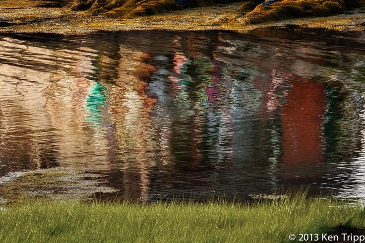 Maine Reflection