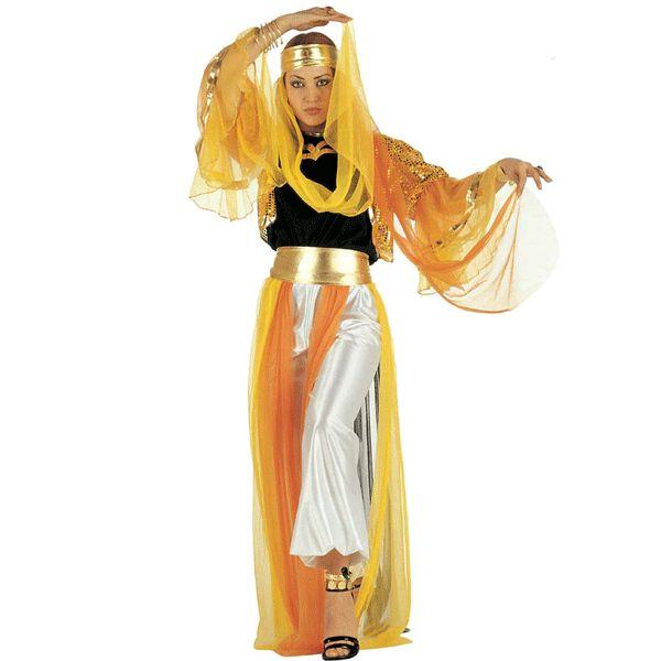 Arabisch kostuum Aaliyah voor dames. Arabisch dames kostuum in 1001 en nacht stijl. Dit kostuum bestaat uit een jasje, broek, riem en hoofdband!