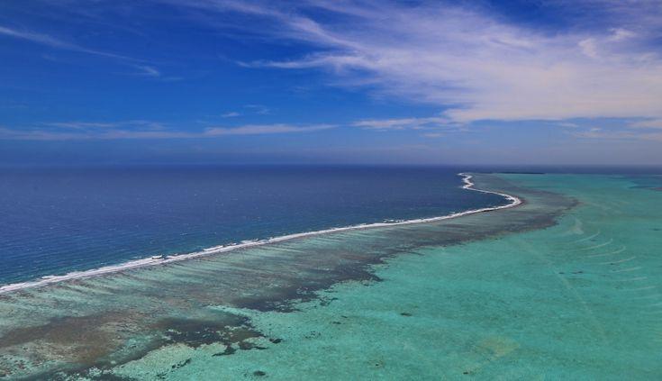 Altra tappa super divertente, un'altra giornata in barca tra le isolette qua vicine, a fare snorkeling nella barriera corallina, che è tra l'altro la seconda al mondo per grandezza, dopo quella australiana.