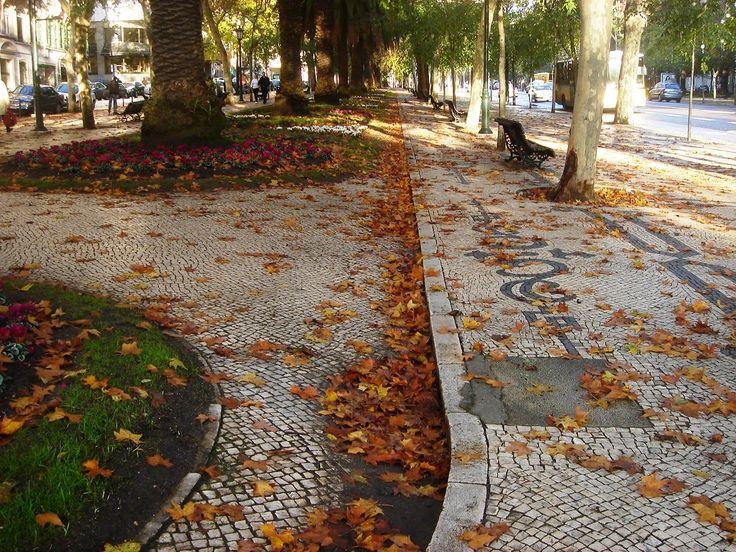 No Outono, a nossa Avenida enche-se de folhas de mil cores que correm espalhadas pelo vento. As nossas jóias também estão repletas de pedras em tons fantásticos!  E com o Inverno quase aí à porta, o melhor é aproveitar o calor dos encarnados, laranjas e amarelos que percorrem a Avenida da Liberdade e entrar no número 102 para ver as novidades que temos para si.  Fotografia: Ermelinda Toscano   #mariajoaobahia #joias #joiasdeautor #jewellery #signedjewellery #avenidadaliberdade #outono…