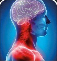 C1 befolyásolja a fej vérellátását, és hatással van az agyra, az agyalapi mirigyre, a fejbőrre, csontokra, a középfülre és az...