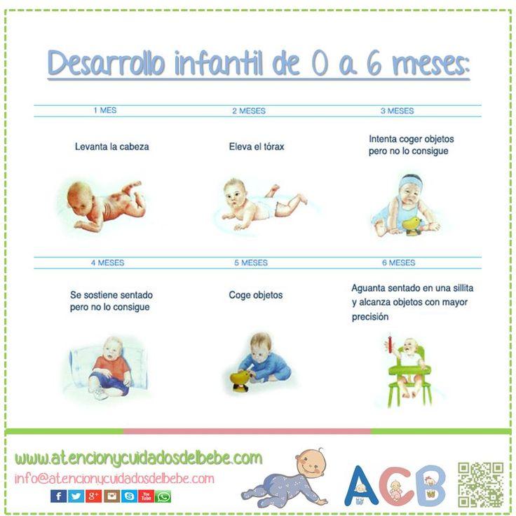 17 best images about psicolog a evolutiva on pinterest a - Desarrollo bebe 6 meses ...