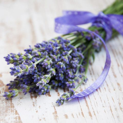 Create a calming and soothing atmosphere with the magic of Lavender