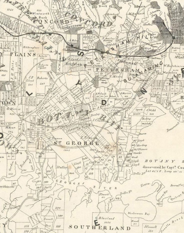 A map of the County of Cumberland in the Colony of New South Wales 1840-1860 (detail)