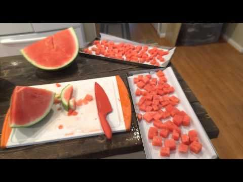 Harvest Right Freeze Dryer - Watermelon - YouTube                                                                                                                                                                                 More
