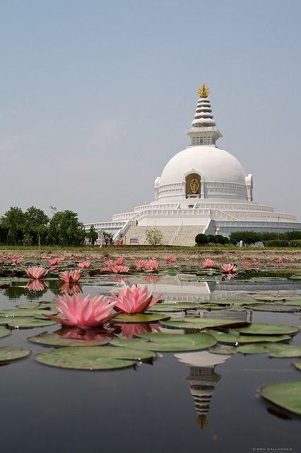 Mundial pagoda de la paz en el lugar de nacimiento de Buda, Lumbini, Nepal