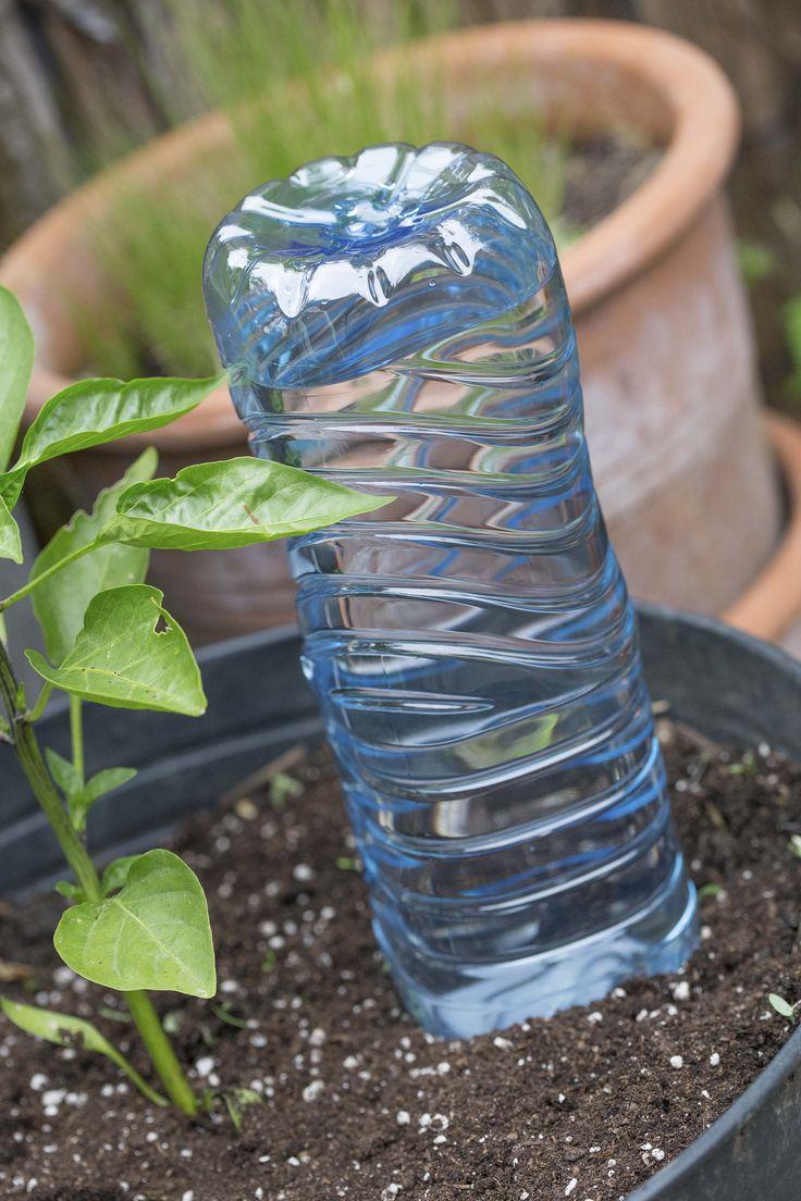 Ab in den Urlaub – So überlebt Ihr Garten die Ferienzeit!
