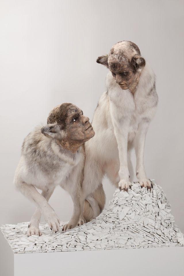 Conoce a la artista que pone rostros humanos en animales disecados