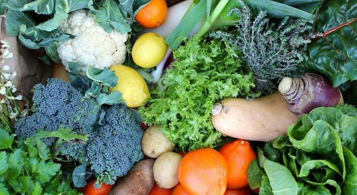 Simple tips to buying & storing your food to make it last longer, and to make sure it doesn't go to waste…