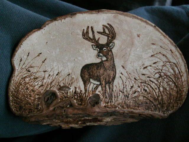 Dried Shelf Mushroom Art