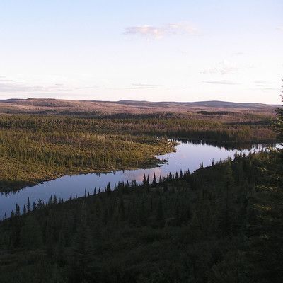 What is the largest biome in the world? Taiga! The taiga is the largest biome on earth, taking up almost 30% of the world's surface, and is chiefly located in Canada and Russia.