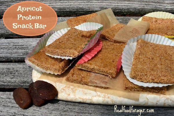 Apricot Protein Snack Bar (SCD, GAPS, Paleo, AIP) - nut free
