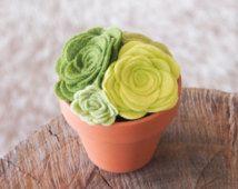 Feltrata succulente in vaso pianta, Eo-Friendly Cactus, fioriera, terrario, feltro fiori, grandi Everlasting Home Decor,
