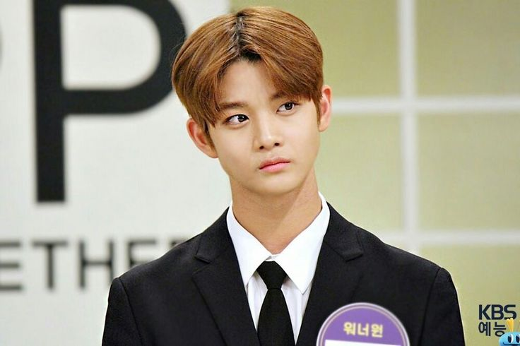 Wanna One Bae Jin Young in Happy Together 3