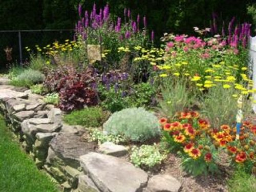 79 best Edmonton plants images on Pinterest Shade garden, Shade